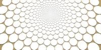 Motifs - fibonacci