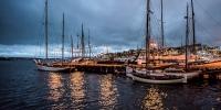 příroda - večerní přístav
