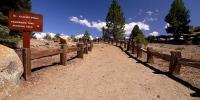 nature - priroda yosemite cesta