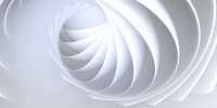 Motifs shell #4 - thumbnail